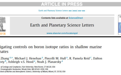 Boron Isotopes in Shallow Marine Carbonates, Nov 2016